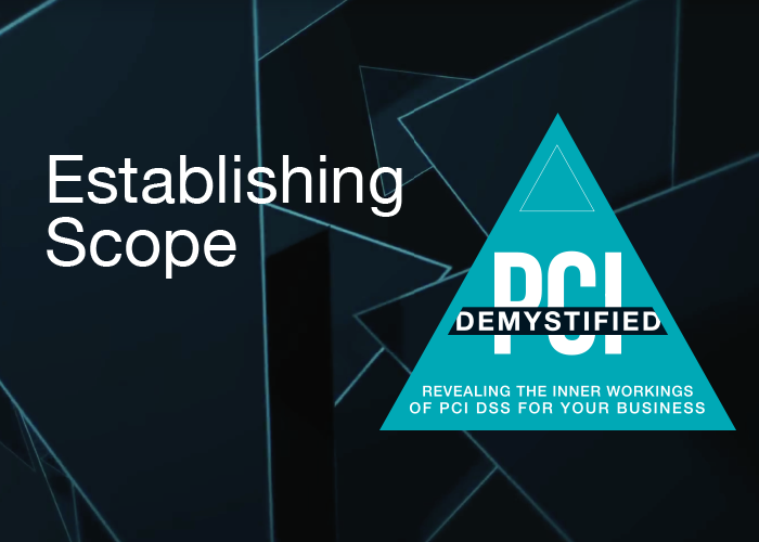 Establishing the Scope of Your Cardholder Data Environment - PCI Demystified