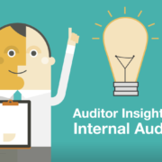 Auditor Insights: Day-to-Day Operations of Internal Audit