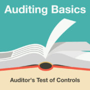 Auditing Basics: Auditor's Test of Controls